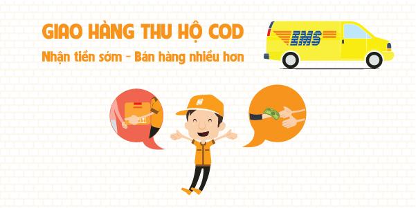 Dịch vụ COD trong quận Ba Đình giá rẻ, uy tín của EMS Việt Nam