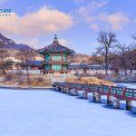 Dịch vụ vận chuyển bưu phẩm đi Hàn Quốc nhanh chóng, giá cạnh tranh