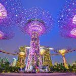 Nhận chuyển phát nhanh đi Singapore đảm bảo nhanh chóng, an toàn